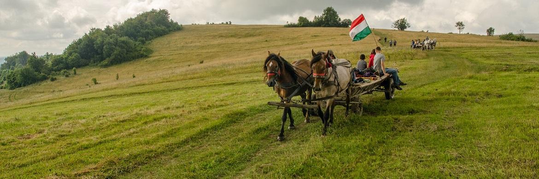 Magyarok egy helyen - Petőfi Program